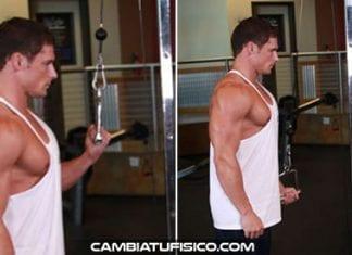 Extensiones en polea a un brazo