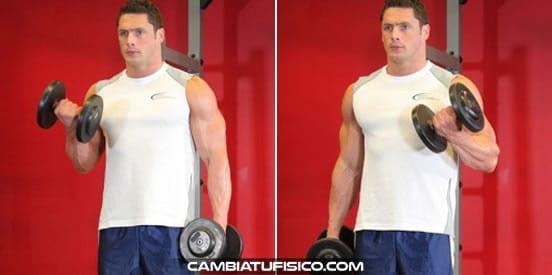 Curl de biceps alterno con mancuernas
