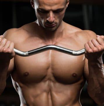 L um carnitine na perda de peso favorecem ao dano