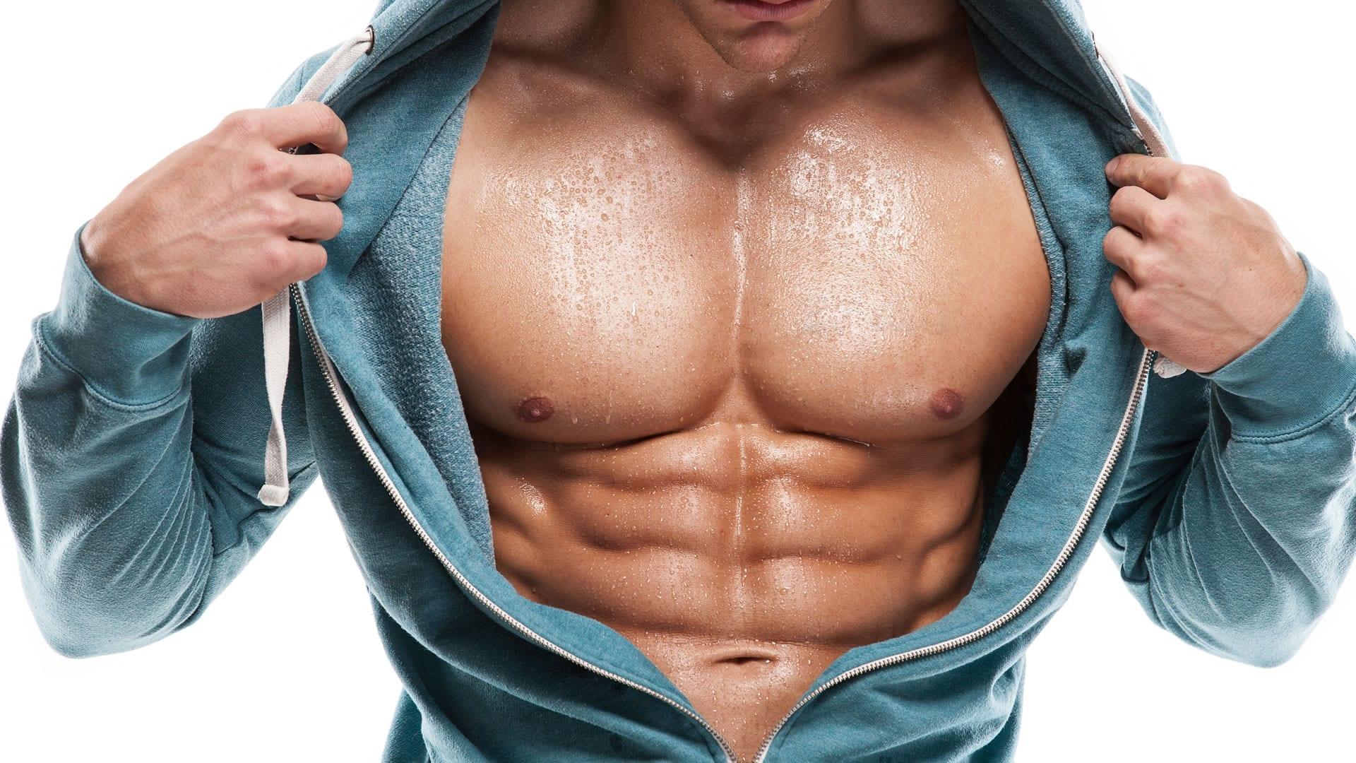 Anatomía de los abdominales | Cambiatufisico