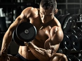 Anatomía del bíceps y antebrazo