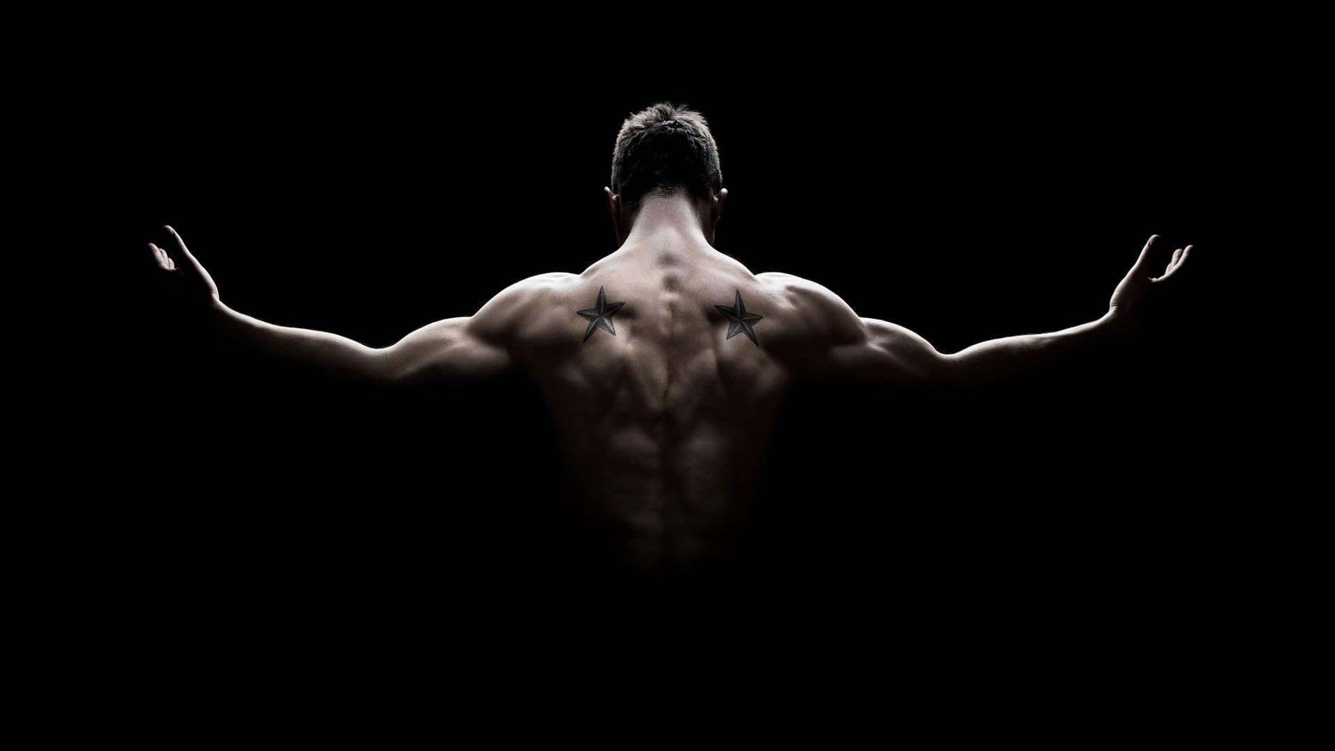 Anatomía de la espalda | Cambiatufisico