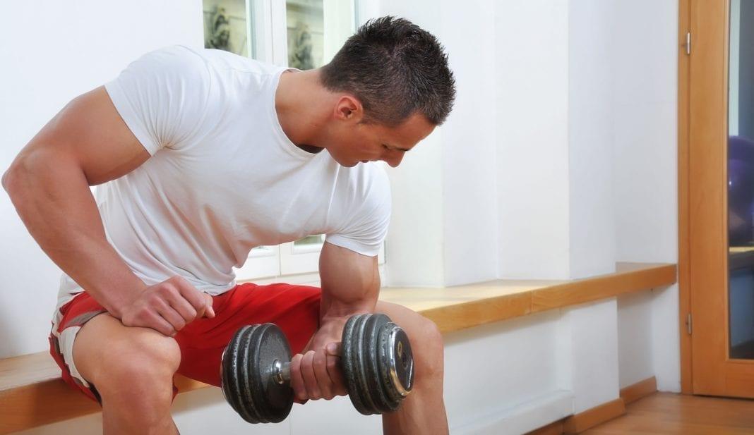 bíceps grandes