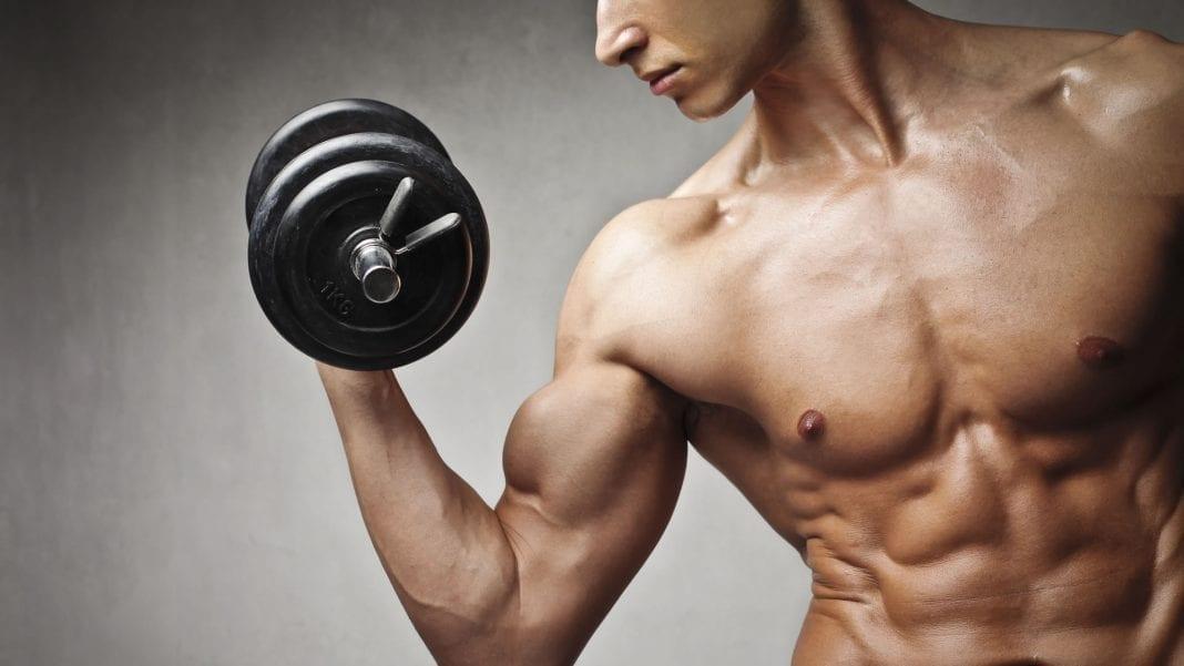 Entrenar para un cuerpo proporcionado