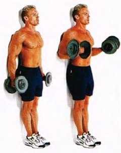 Curl de bíceps apoyado contra la pared