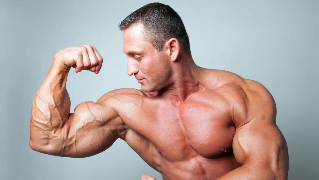 Carga para desarrollo muscular