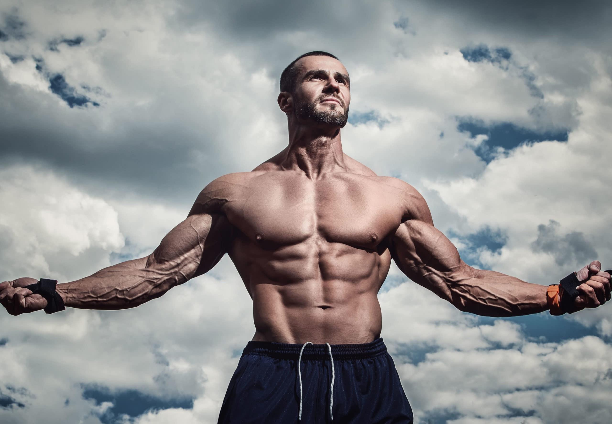 dieta mantenimiento muscular