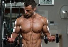 Ejercicios de Bíceps
