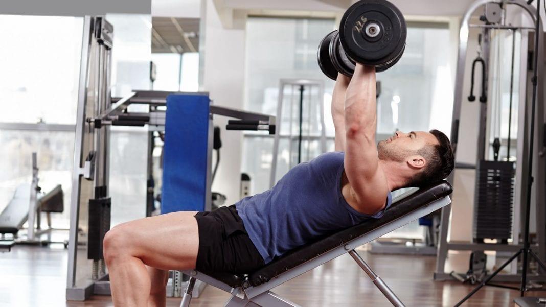 Ejercicios que más fibras musculares estimulan