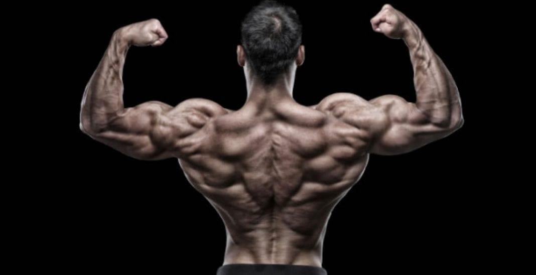 Entrenar la espalda en quince minutos