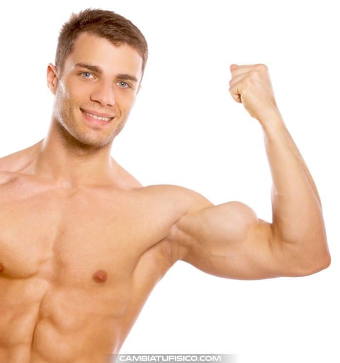 Forma de los músculos