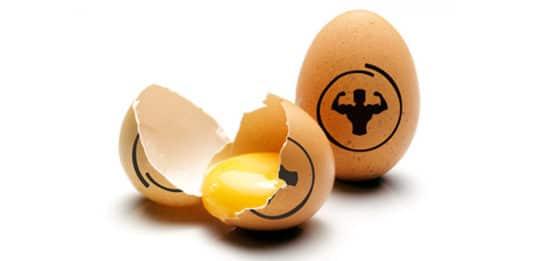 Huevos en la dieta