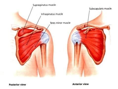Estiramiento de los hombros | Cambiatufisico