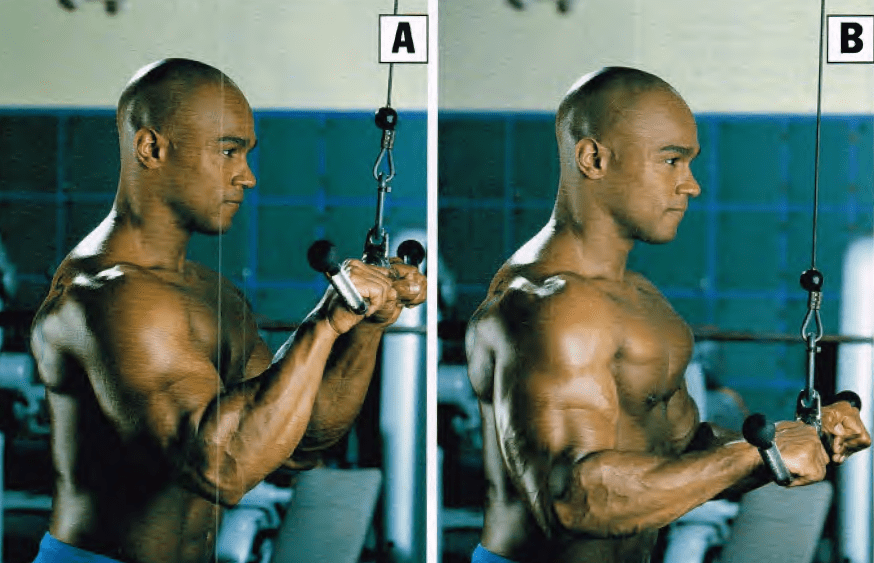 jalones para triceps