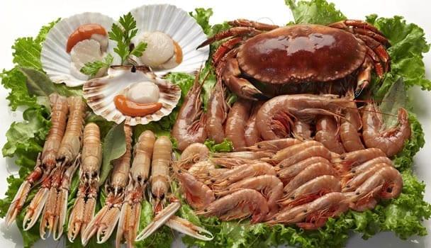 marisco proteinas