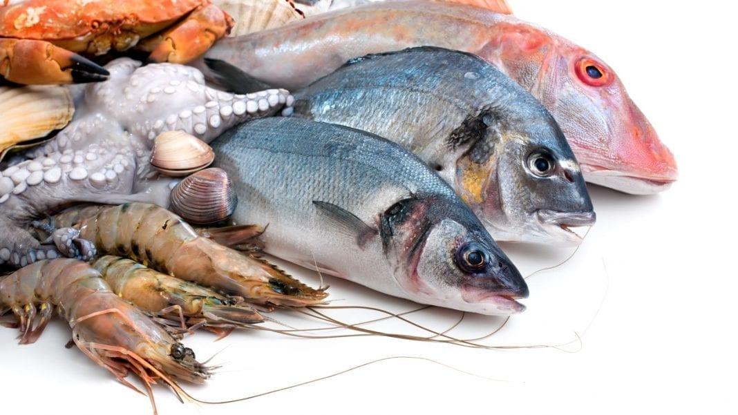 Guía definitiva sobre el pescado