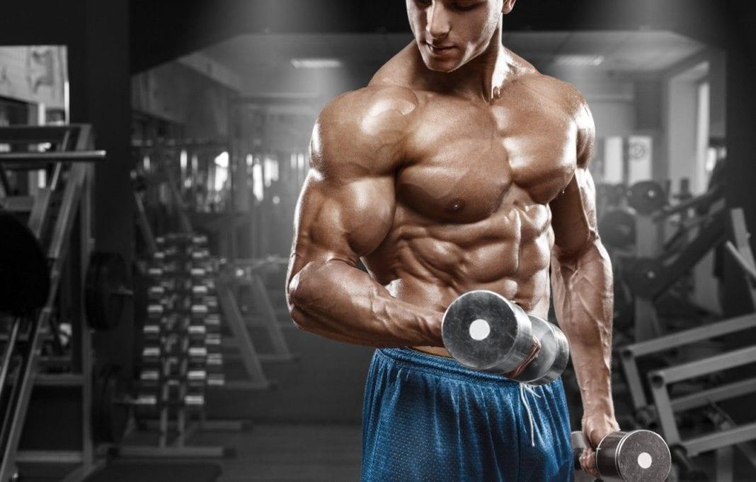 Recuperación muscular