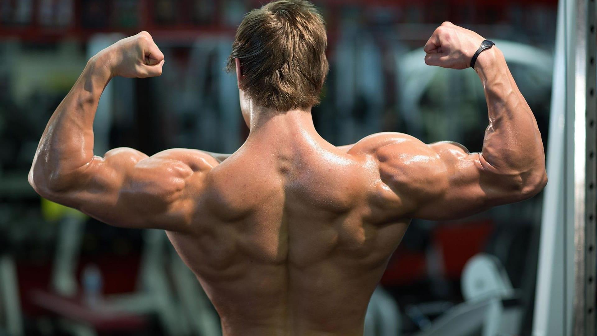 arnold schwarzenegger bodybuilding wallpaper hd