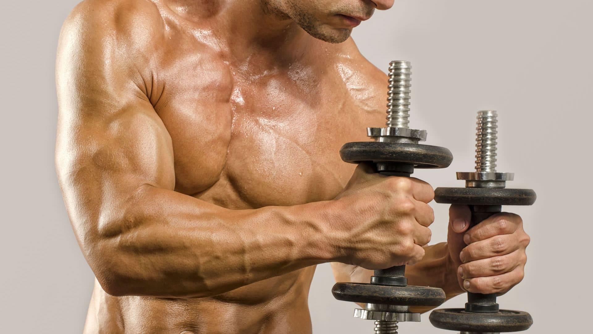 ▷ Rutinas de Definición Muscular