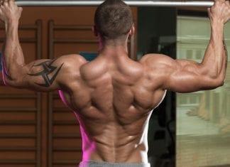 Rutinas de espalda por niveles