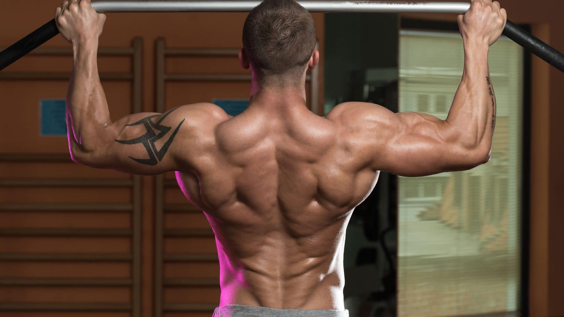 Rutinas de espalda según tu nivel | Cambiatufisico