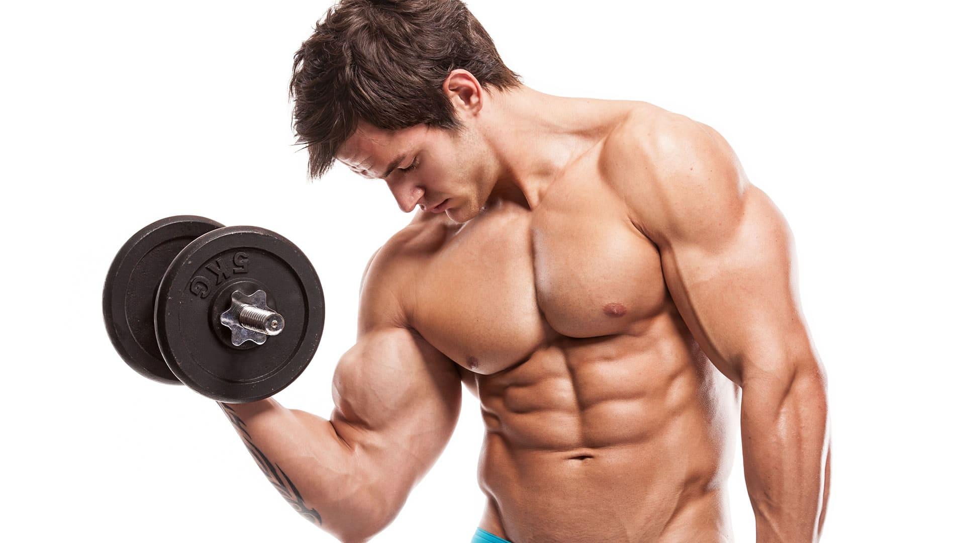 Resultado de imagen para ejercicio muscular